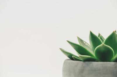 tiempo paso rollo imaginario minimal minimalist blog